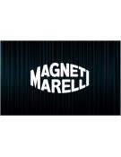 Déverouillage calculateur Magneti Marelli Clio 3 Cup
