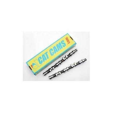 Clio III RS - Arbres à cames CatCams