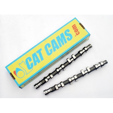 Clio II RS - Arbres à cames CatCams