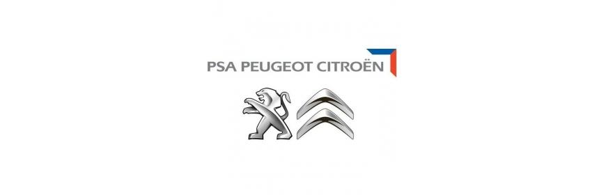 PSA Peugeot/Citroën
